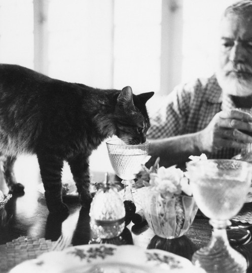 EH8505P Ernest Hemingway at table with his cat Cristobal at Finca Vigia.